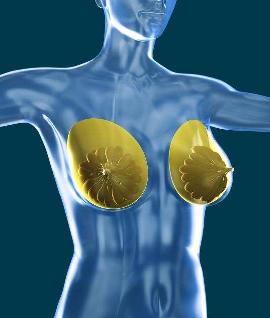 乳房再建のタイミング