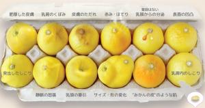 乳がんの兆候を表すレモン