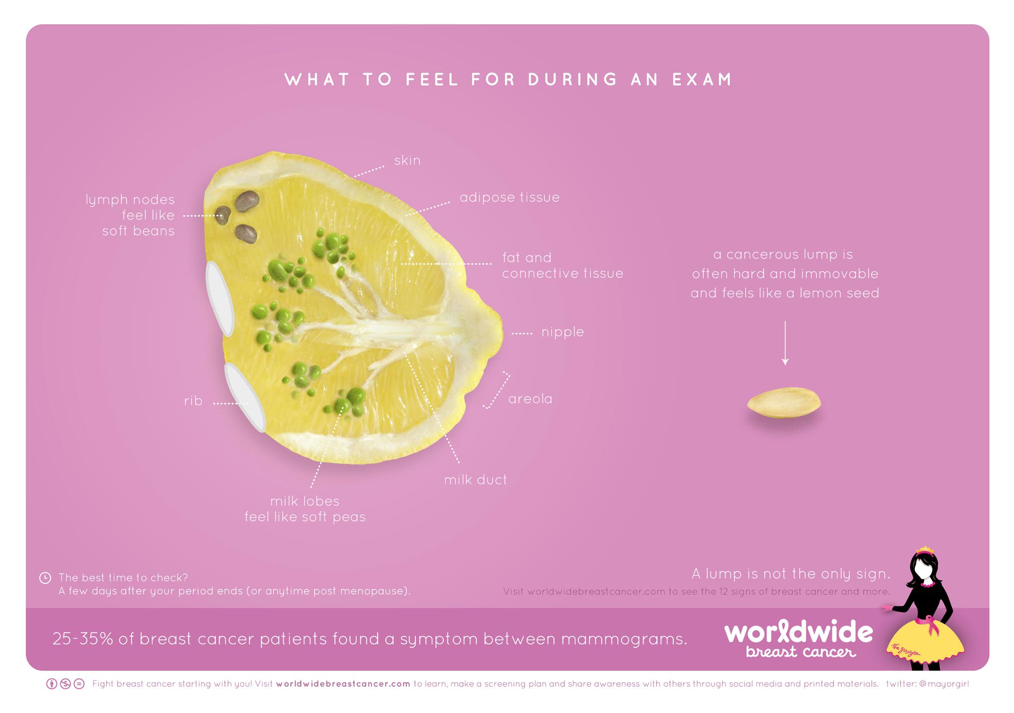 乳房の中の乳がんをレモンで表現