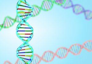 乳がんと遺伝の関係