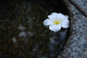 簡単にできる瞑想