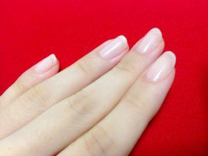 爪の色や形で見る健康状態